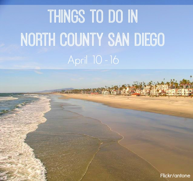 Things To Do In San Diego North County