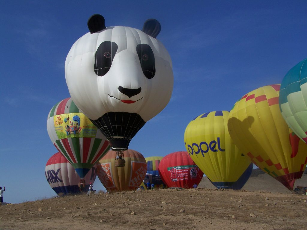 Panda-Monium Hot Air Balloon Flights