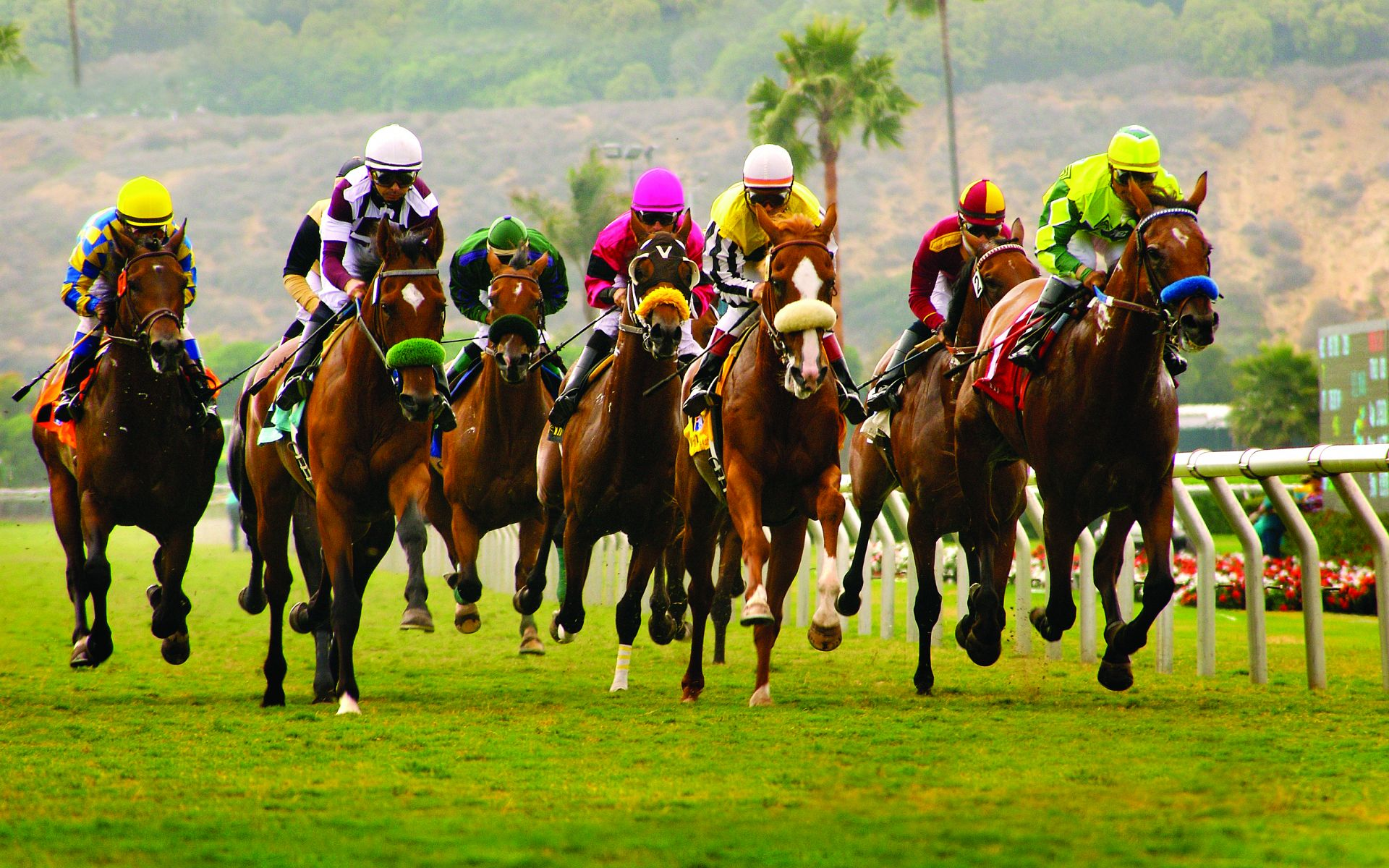 Del Mar Horse Racing Tips