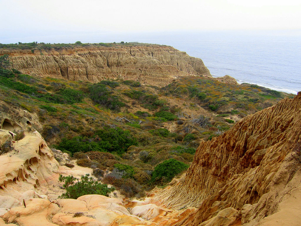 Nearby Torrey Pines State Reserve