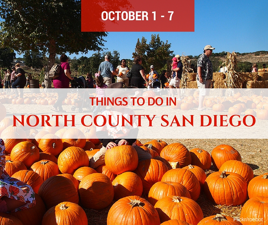 Things To Do In North County San Diego Events Oct 1 7
