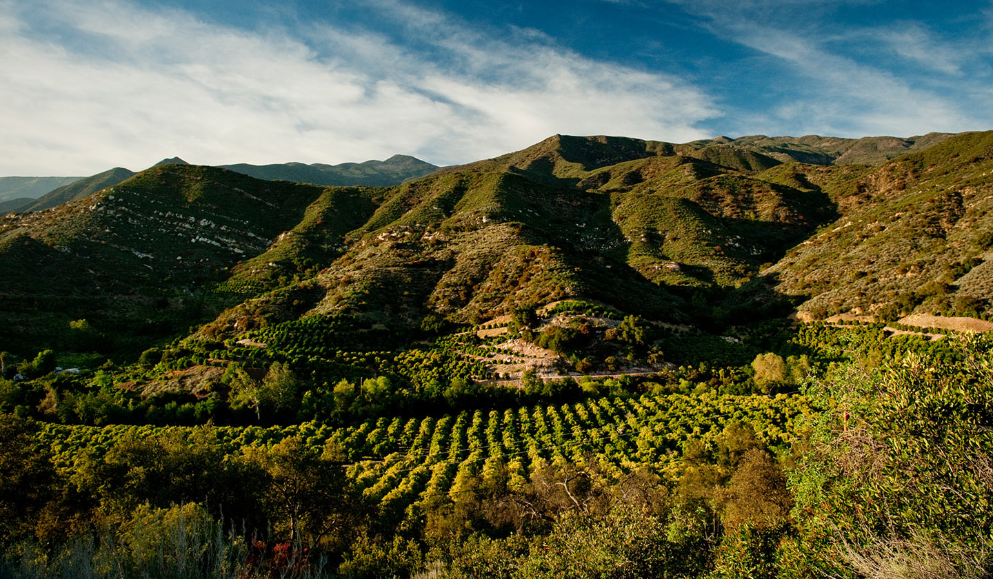 Weekend Getaway  Top Things To Do In Ojai