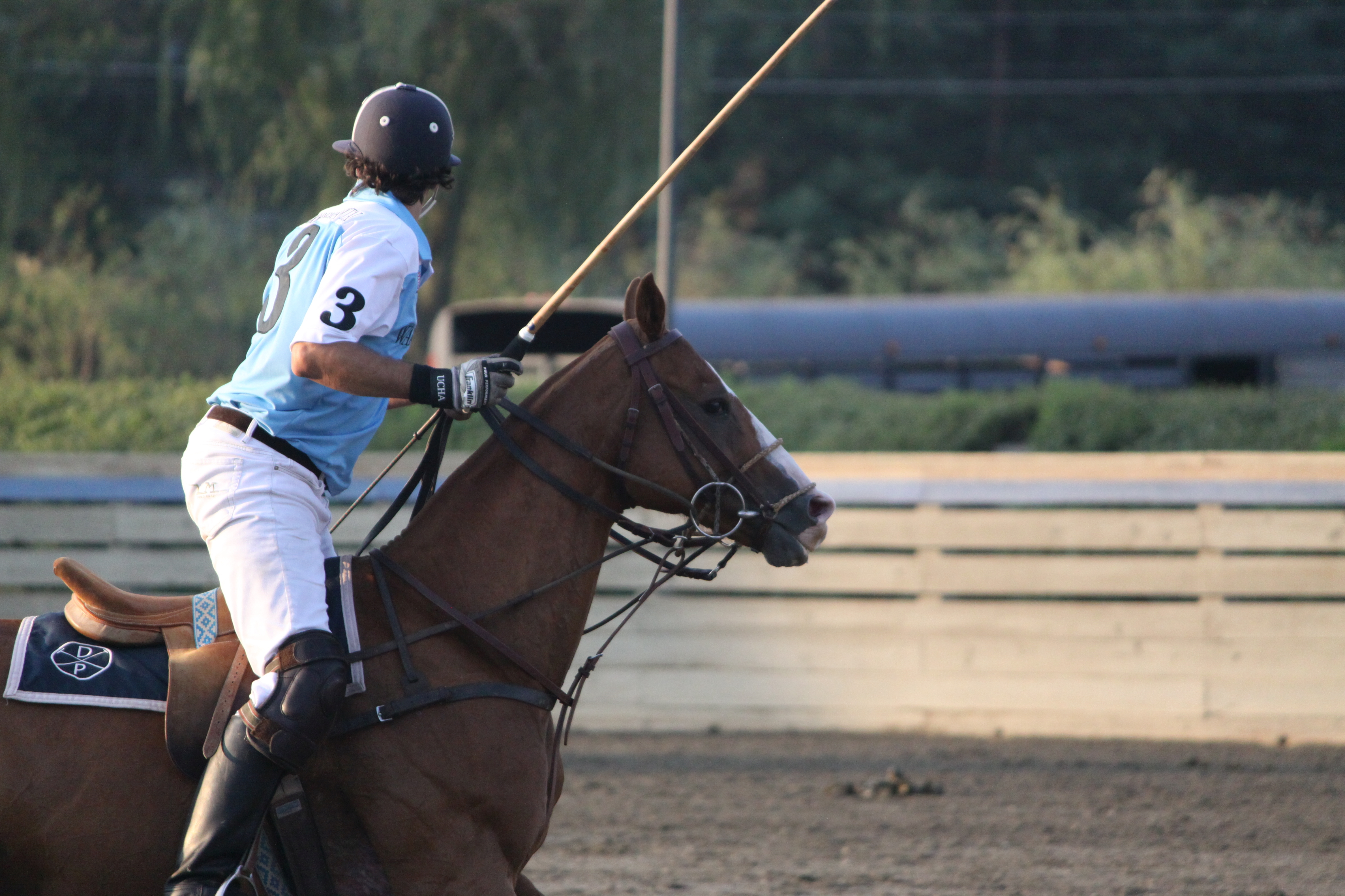 Polo Club Neighborhood Guide Del Mar Rancho Santa Fe Ync
