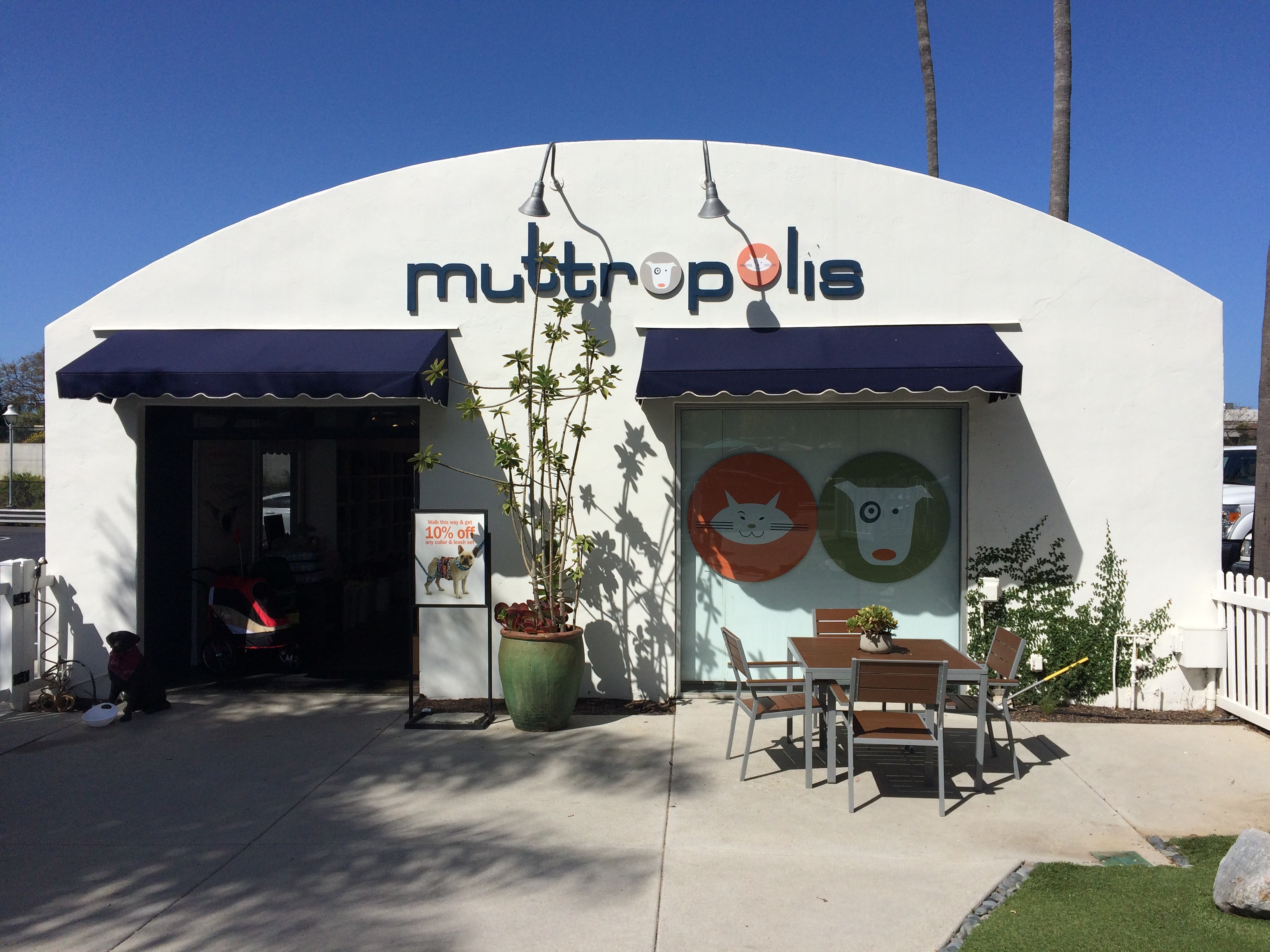 muttropolis solana beach pet store