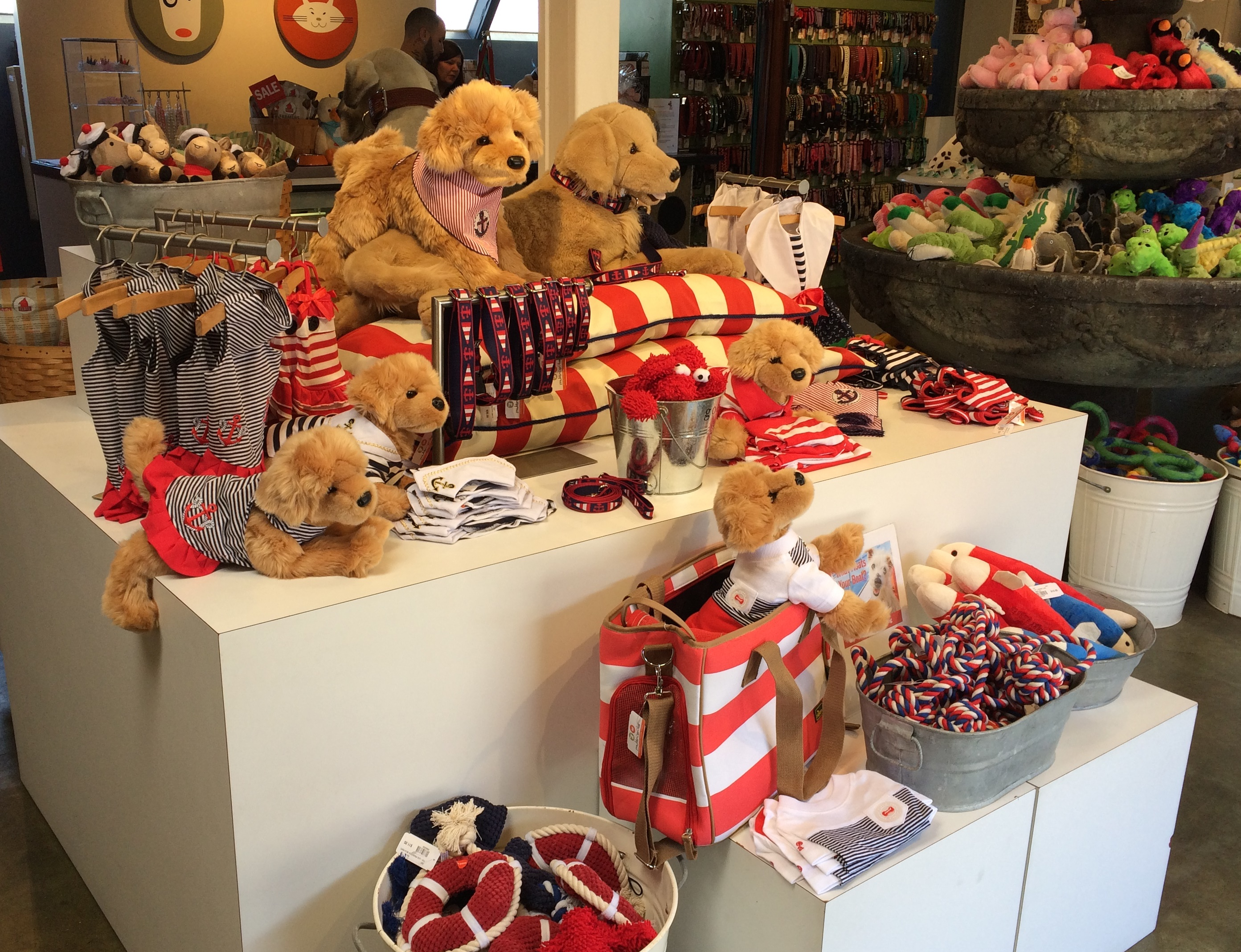 muttropolis pet store solana beach