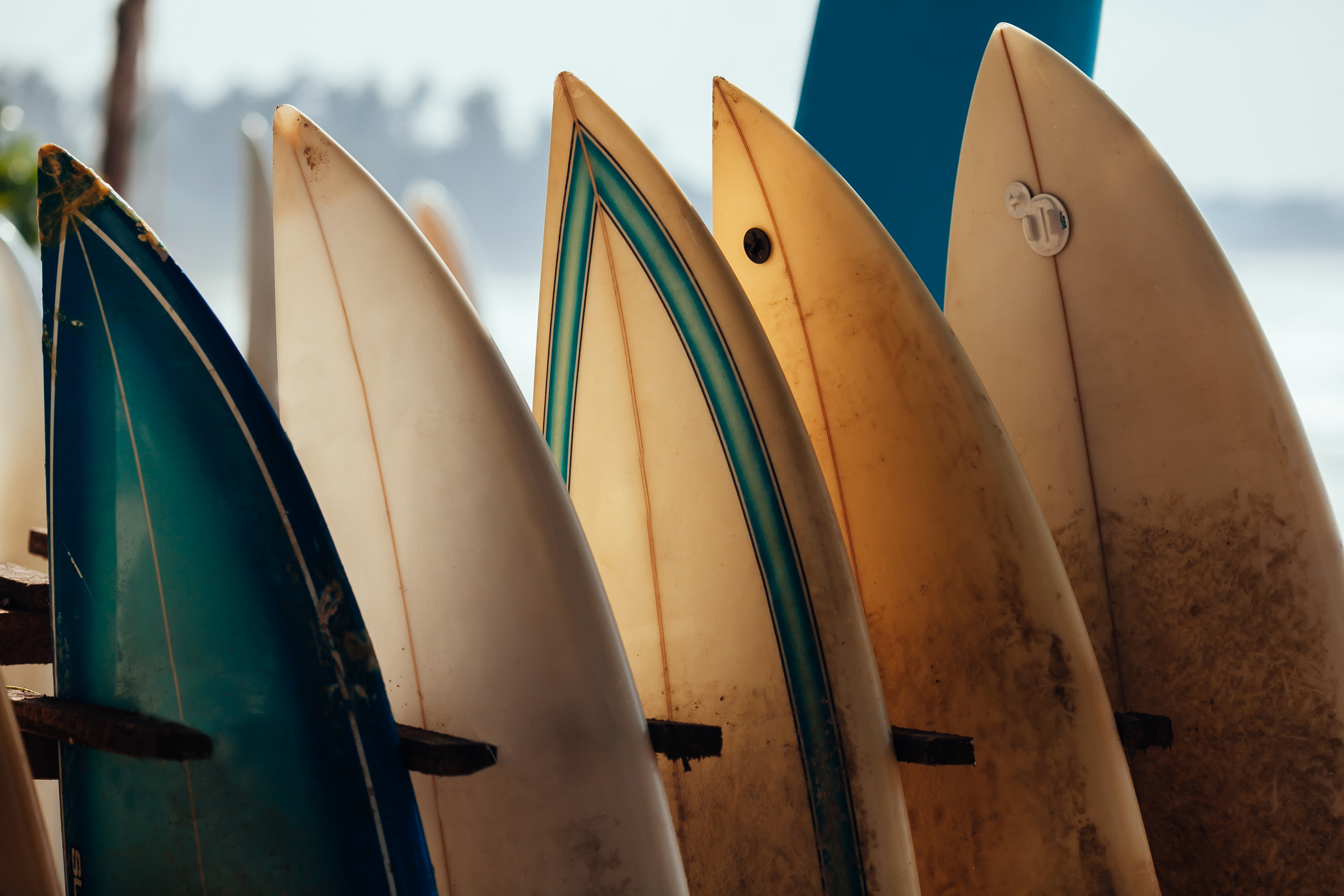Surf Lessons in San Diego North County (2018 Guide) | YNC