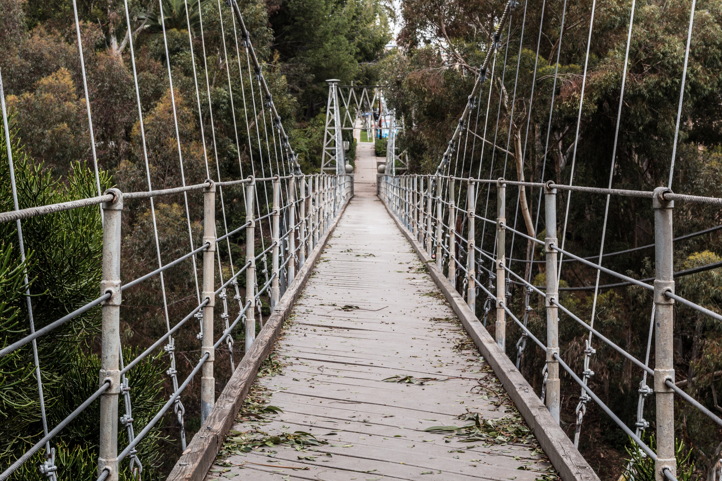 things to do in san diego Spruce Street Suspension Bridge