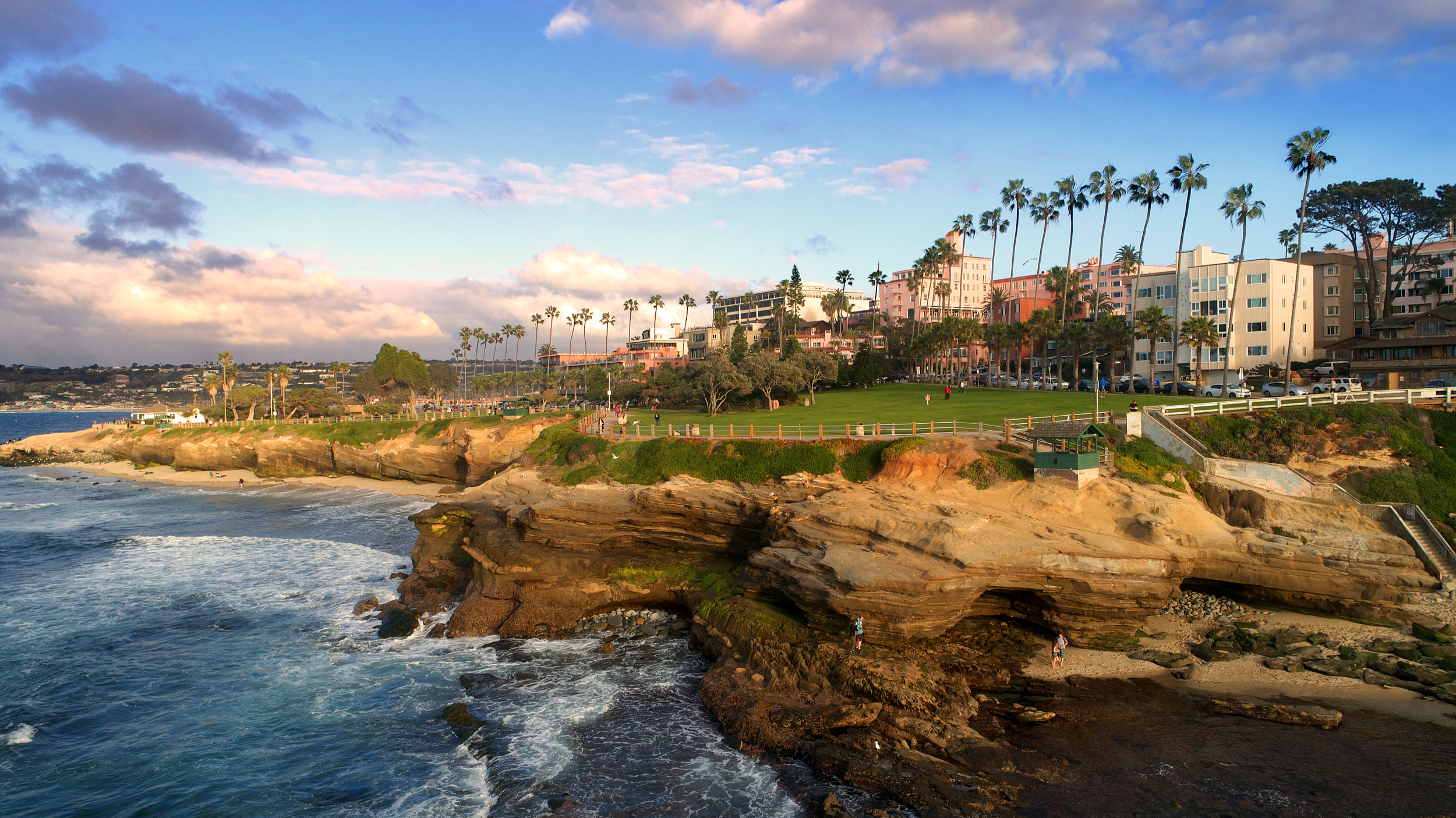 things to do in san diego ellen browning scripps park